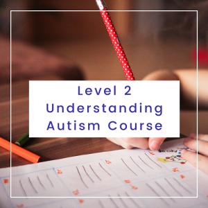 Level 2 Understanding Autism Course
