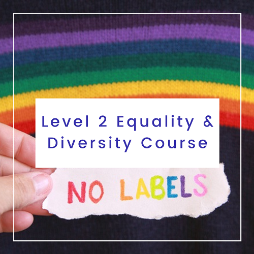 Level 2 Equality and Diversity Course